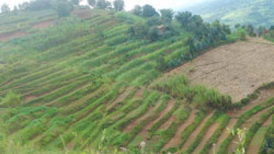 Rulindo District has vowed to terrace hilly areas to avoid a similar catastrophe like the one that encumbered it recently as the September rains draw nearer. The New Times /File.