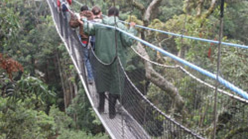 The canopy walk in Nyungwe Forest. Rwandan foreign missions play a crucial role in promoting the country's tourism potential. The New Times / File