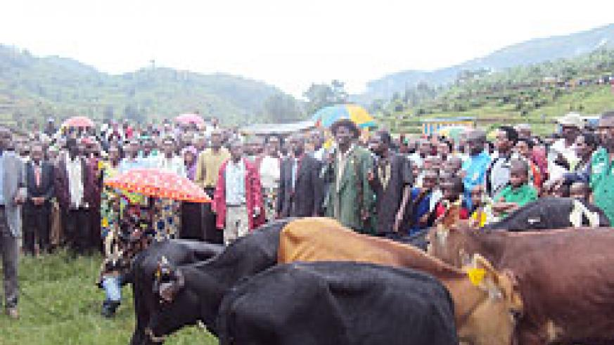 Kiyombe sector residents gather to receive cows donated to them by their counterparts from Rutunga sector. The New Times \Dan Ngabonziza