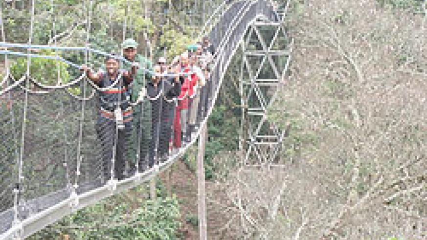 The popular canopy walk in Nyungwe forest. The New Times / File photo