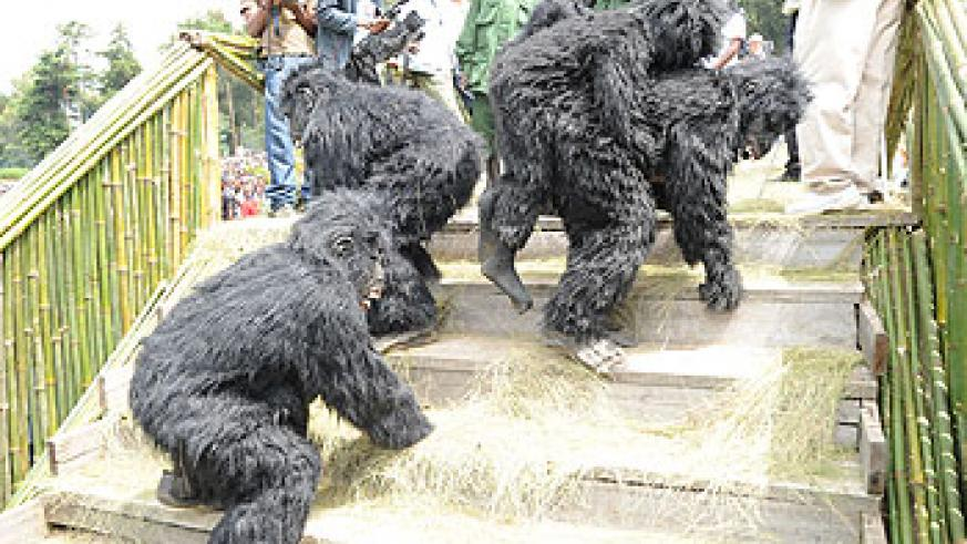 Last year's Gorilla naming ceremony. The New Times / File.