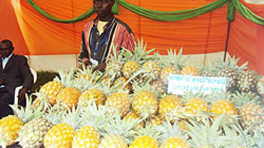 A local farmers cooperative exhibits pineapples at the Nyaruguru District exhibition. The New Times/Bucyensenge