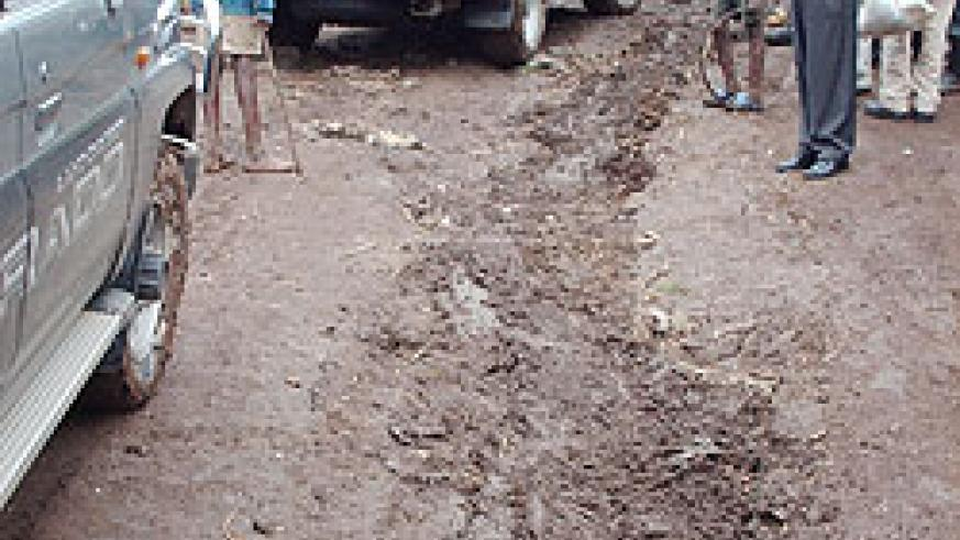 A countryside road. A latest survey has indicated poor infrastructure as a major impediment to development.