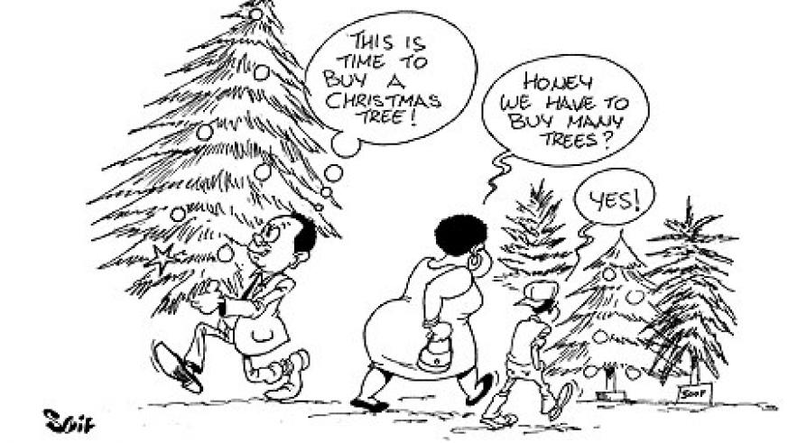 Christmas trees were sold in large numbers on Saturday.