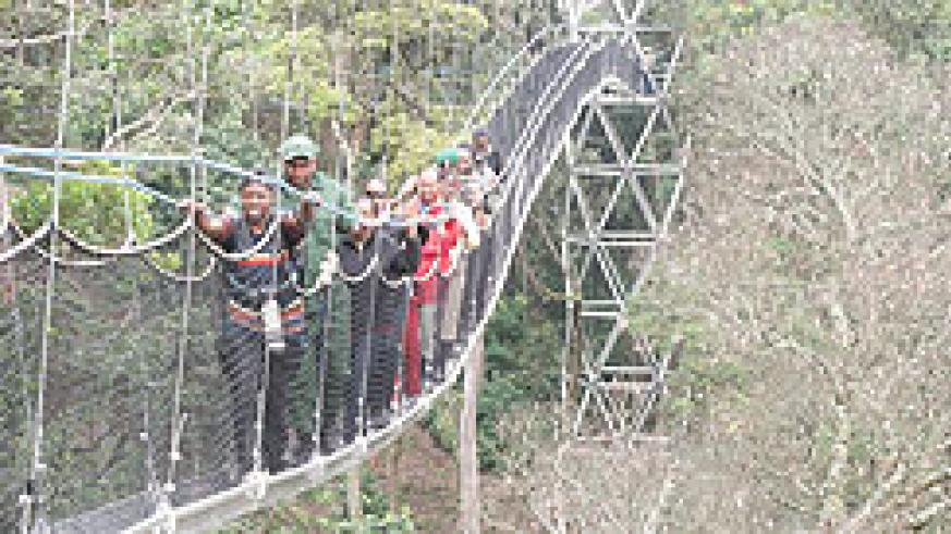 A canopy walk in Nyungwe Forest (The New Times /File)