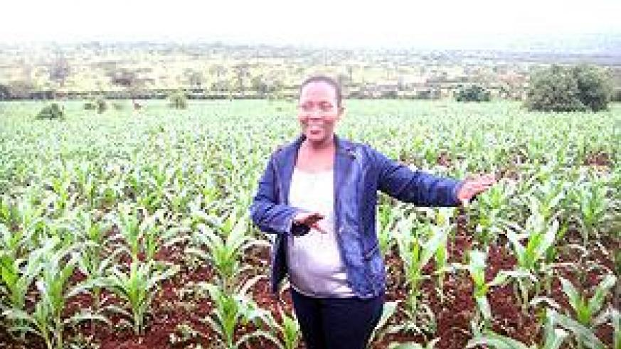 Solange Nina Mukayiranga talking to Sunday Times from her beautiful maize farm in Rwimiyaga in Kirebe village. The Sunday Times / S. Rwembeho.