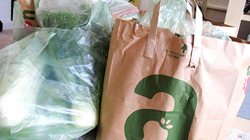 Plastic and paper bags. Rwanda banned the former. Net photo