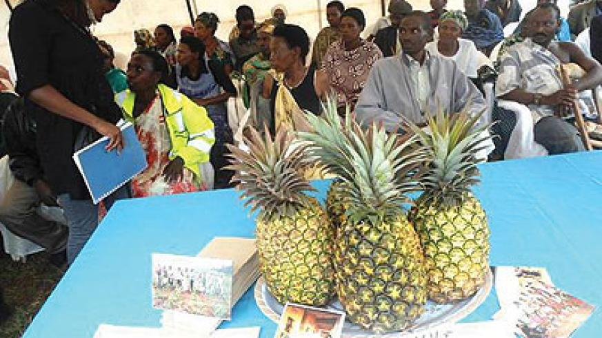 Ngoma farmers display pinneapples during a trade show. The New Times/S. Rwembeho.