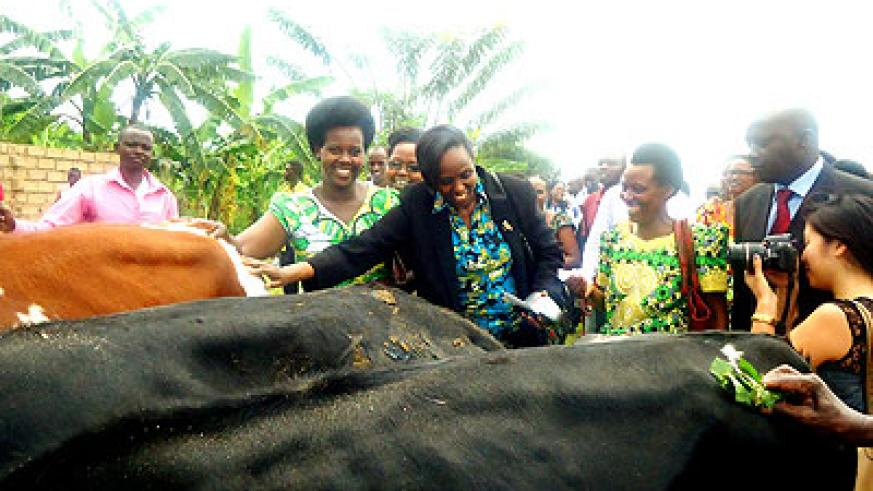 Kalibata (C) hands over the cows to relatives of the Genocide victims.  The New Times/ J. Mbanda.
