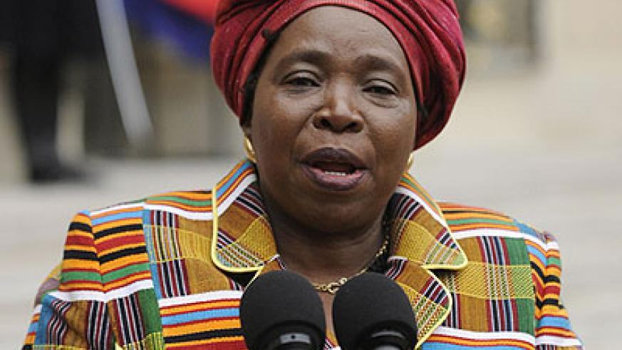 Nkosazana Dlamini-Zuma is in Harare to assess progress on preparations for the forthcoming elections. Net photo.