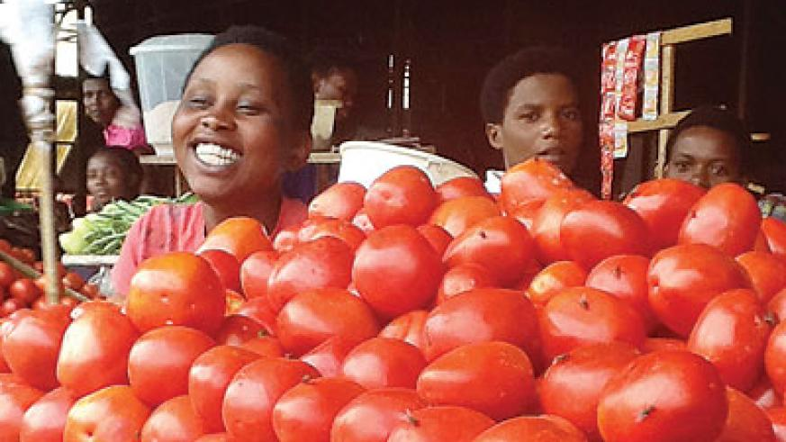 Tomato prices have hit the roof top in the east. The New Times/Seraphine Habimana