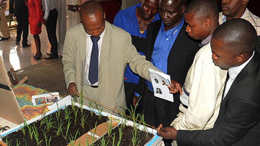 Participants being shown how rice farming is carried out. The New Times/John Mbanda.