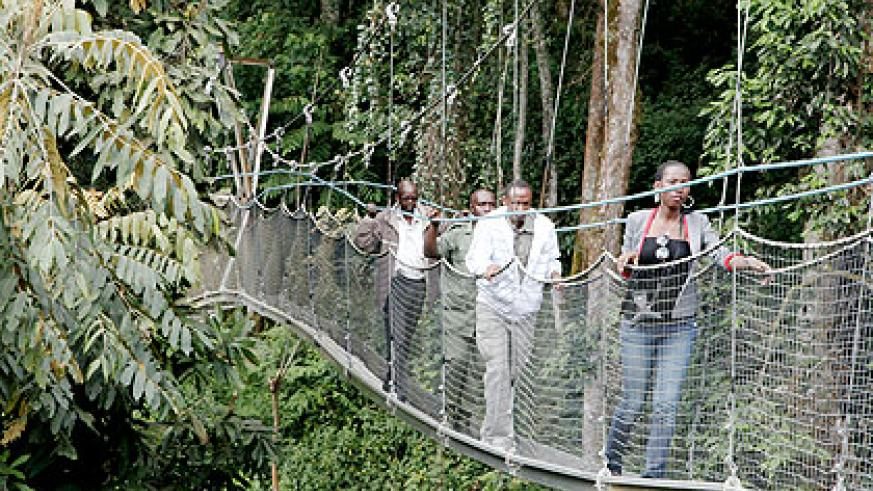 Tourists experience the thrills of canopy crossing in Nyungwe Forest National Park.The New Times/ File.