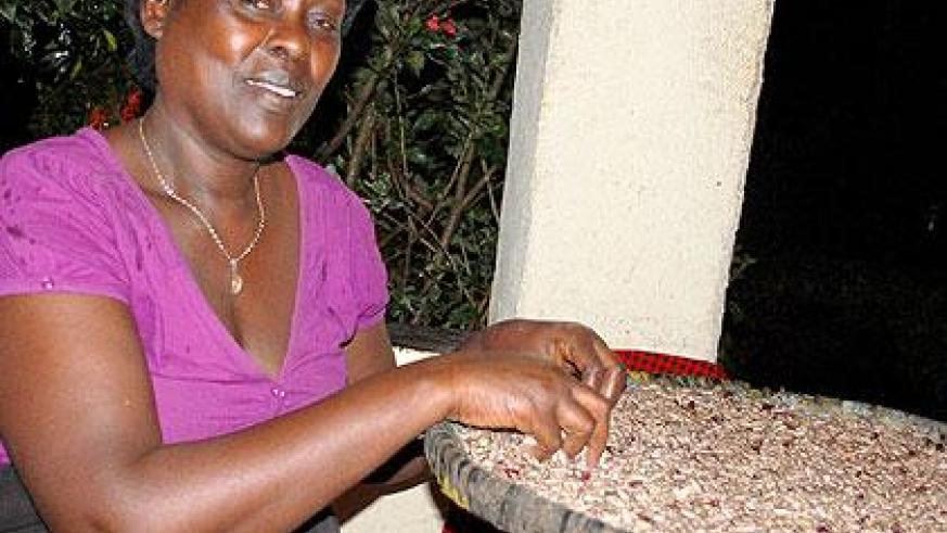 Grâce Mukagatare sorting beans at her home. Sunday Times/Jean-Pierre Bucyensenge