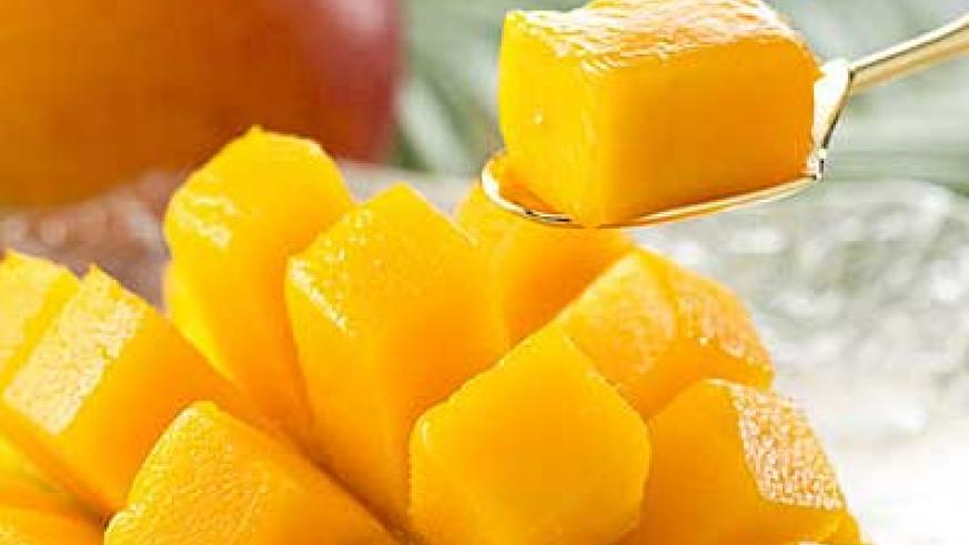 Whereas fruit is good for you, over doing it with mangoes may leave you bloated.