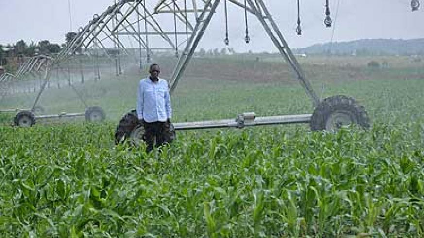A maize farmer stands by his moveable irrigation system. Modern farming methods are a neccesity for any country to achieve sustainable food output. The New Times / Peterson Tumwebaze