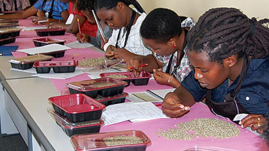 Cuppers sort coffee beans ahead of roasting. Rwanda's coffee is highly sought-after on the global market. (File)