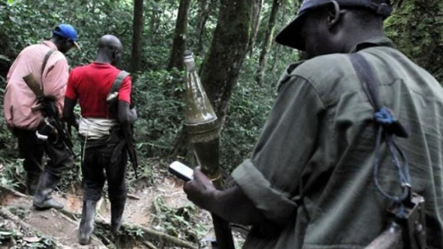 FDLR rebels in eastern DR Congo where they have maintained bases since 1994. (Net)