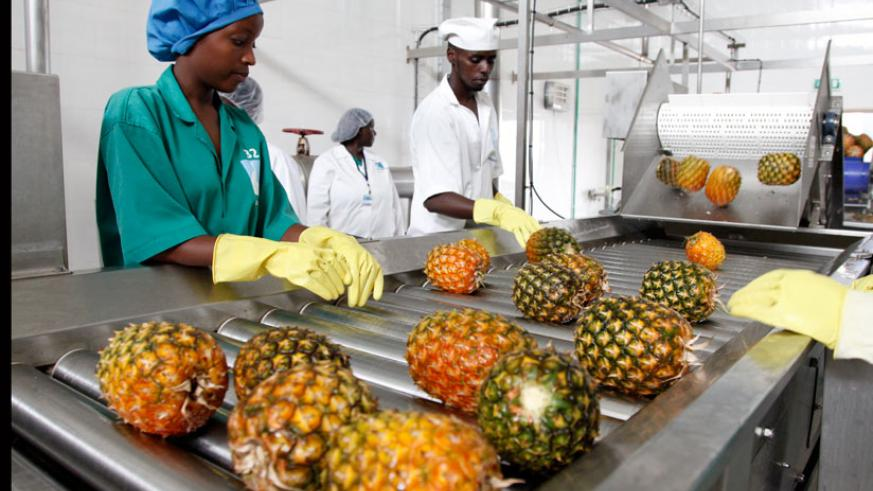 Agro-processing is one of the sectors that will benefit under the initiative.