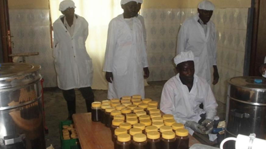 Honey being packaged after extraction in Huye District. (Emmanuel Ntirenganya) .