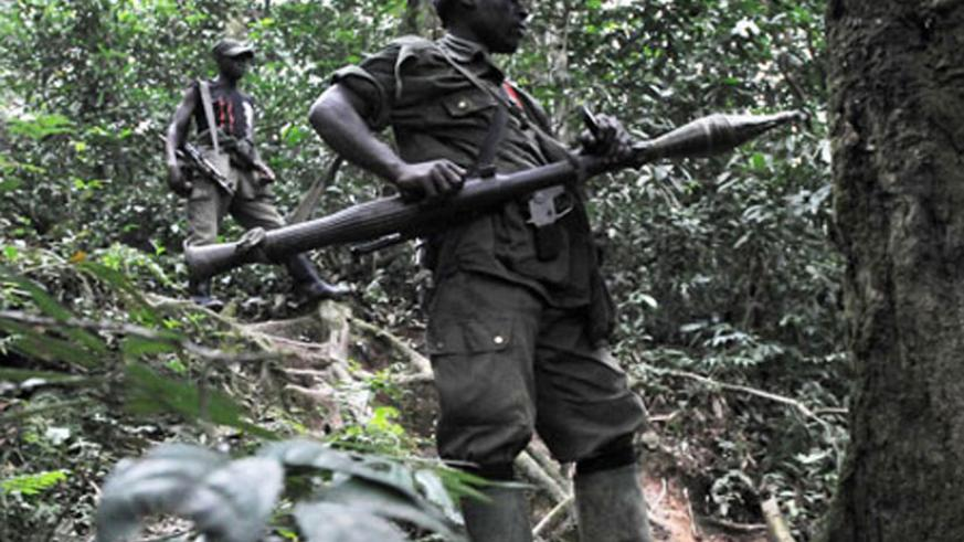 FDLR combattants in eastern DR Congo. (File)