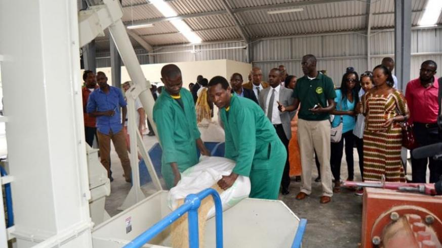 Workers at Zamura Animal Feeds factory keep their fingers busy as its managers explain how it will work. (Jean d'Amour Mbonyinshuti)