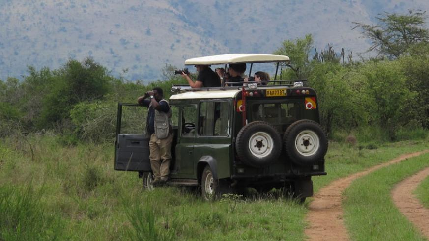 Kirenga leads a bird watching expedition in Akagera National Park. (Courtesy)