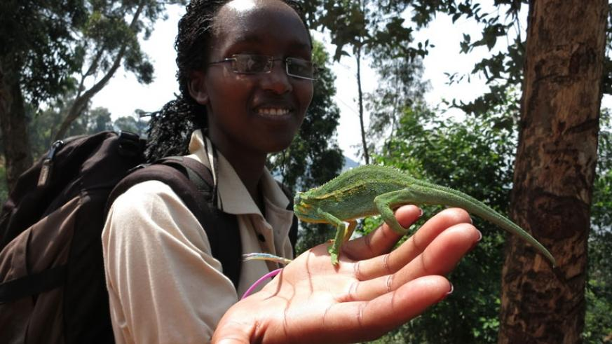 Annie Uwase  plays with a chameleon in Musanze.