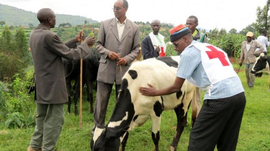 Nzigiye (C) talks to a local leader after delivering a cow. (Lydia Atieno)