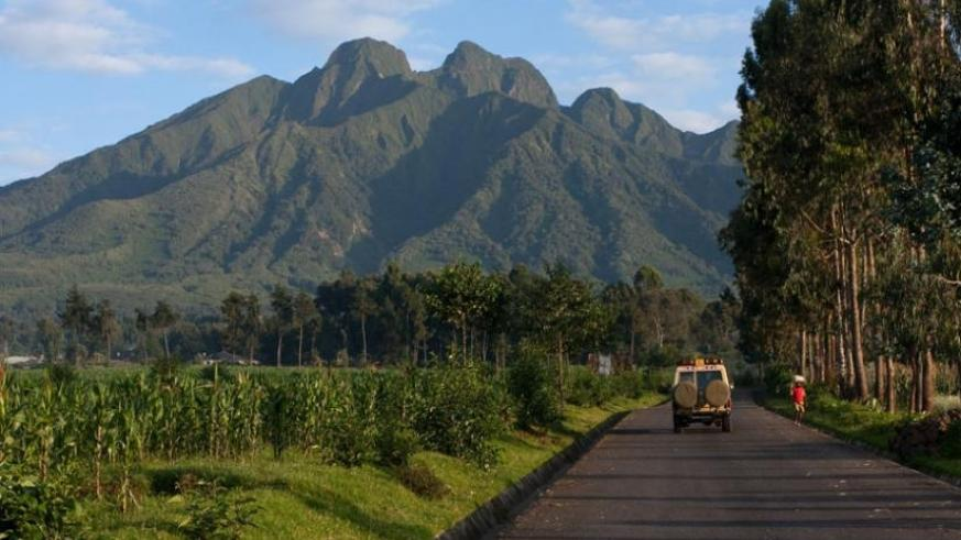 Tourists head to volcanoes in Musanze District. (File)