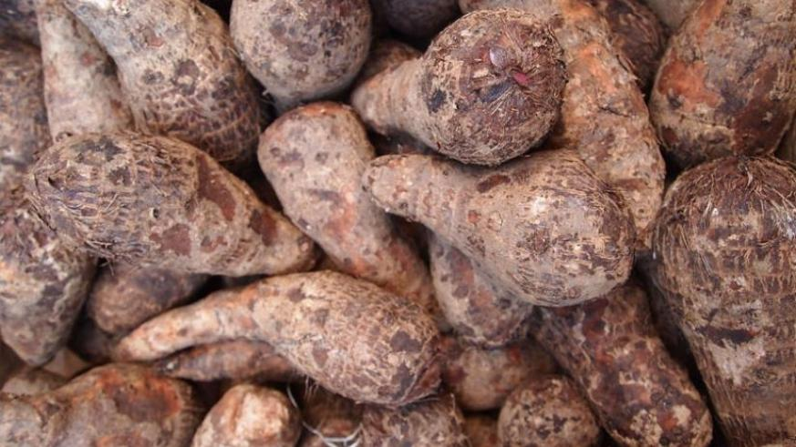 Yams Reduce The Risk Of Constipation Colon Cancer The New Times Rwanda