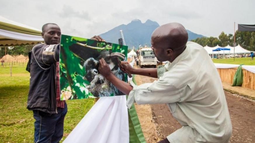 Exhibitors set up stalls in Kinigi ahead of Kwita-Izina ceremony last month. Musanze is host to some of the country's top tourist attractions but local government lags in service delivery. (File)