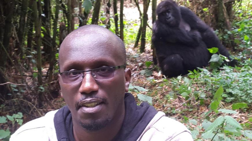 The author of the story is captured on camera posing in front of the famous gorilla. (Internet photo)