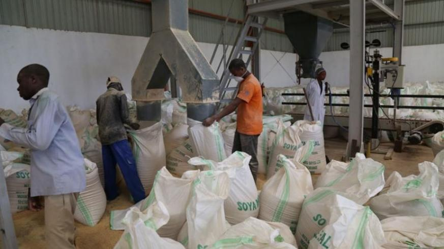 Workers at the Soyco Industries Factory in Kayonza pack soya meal in sacks early this year. (File)