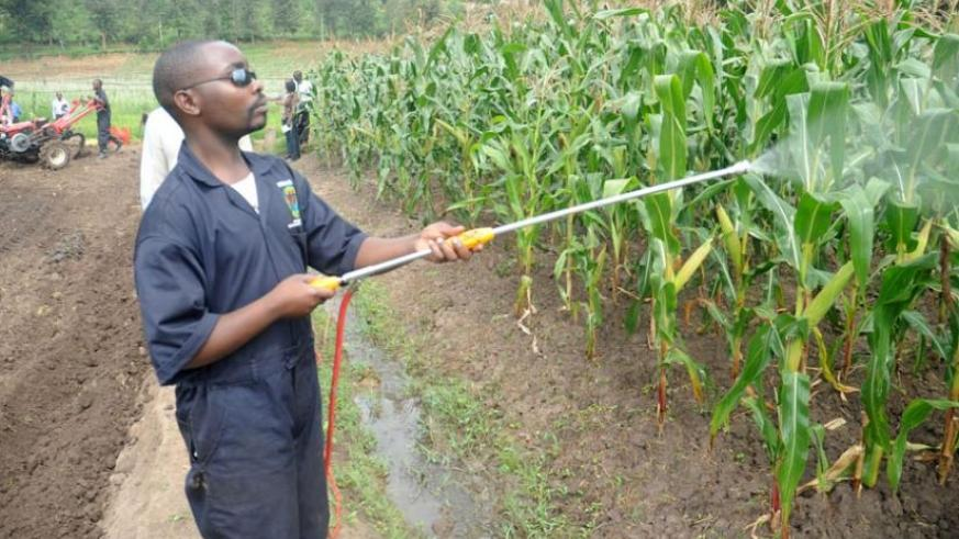 Government is stepping up efforts to boost small-scale irrigation projects. (File)