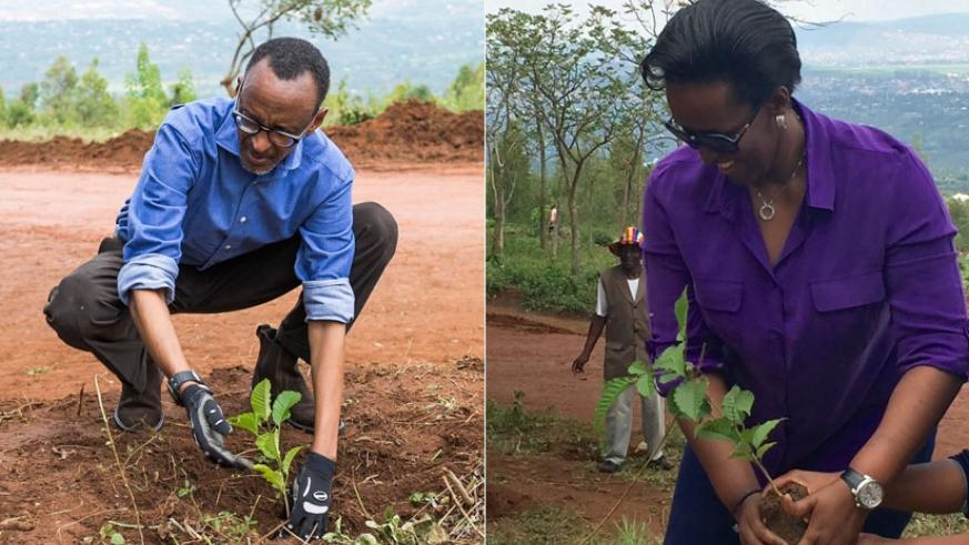 President Kagame (L) and First Lady Jeannette Kagame plant trees during the Umuganda monthly service yesterday. President Kagame told Ndera residents that trees and forests are important and urged Ndera residents to protect all the trees that were planted. (Village Urugwiro)