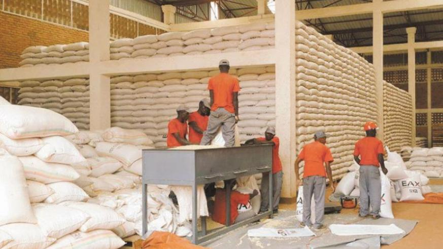 EAX workers sort maize at one of the exchange's warehouses. (File)