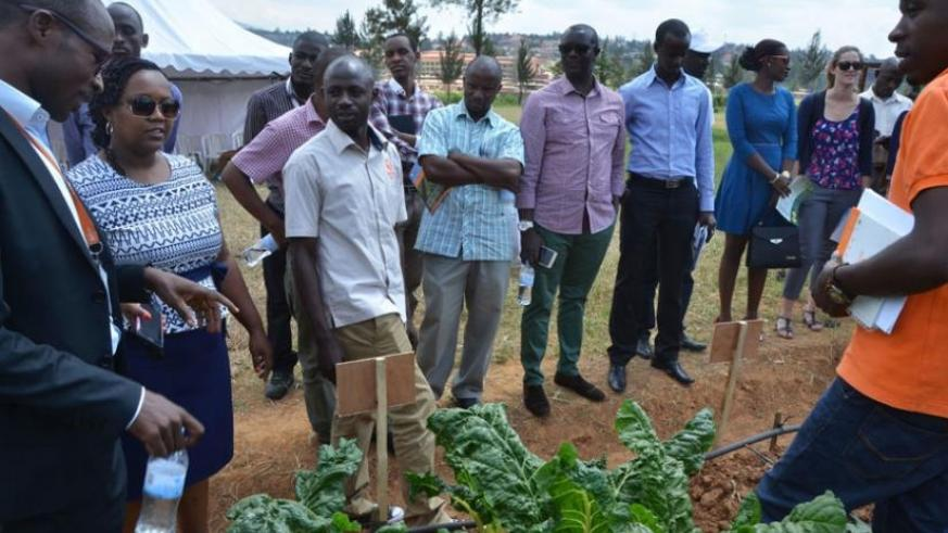 A cross-section of Kigali farmers learn how to grow vegetables at Balton demostration garden in Kacyiru. (Courtesy)