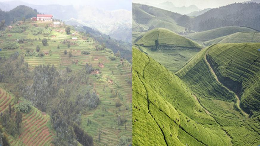 Hills of Crete Congo-Nill in Karongi district