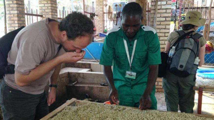 Coffee beans being treated at a washing station. Products like coffee will gain easy access to the European market once the EAC Presidents push through the EPAs (File photo)