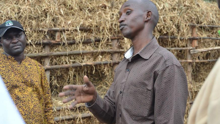 Rwabushayija explains how bean silage (in the background) helped him increase milk production at his ranch. / Kelly Rwamapera.