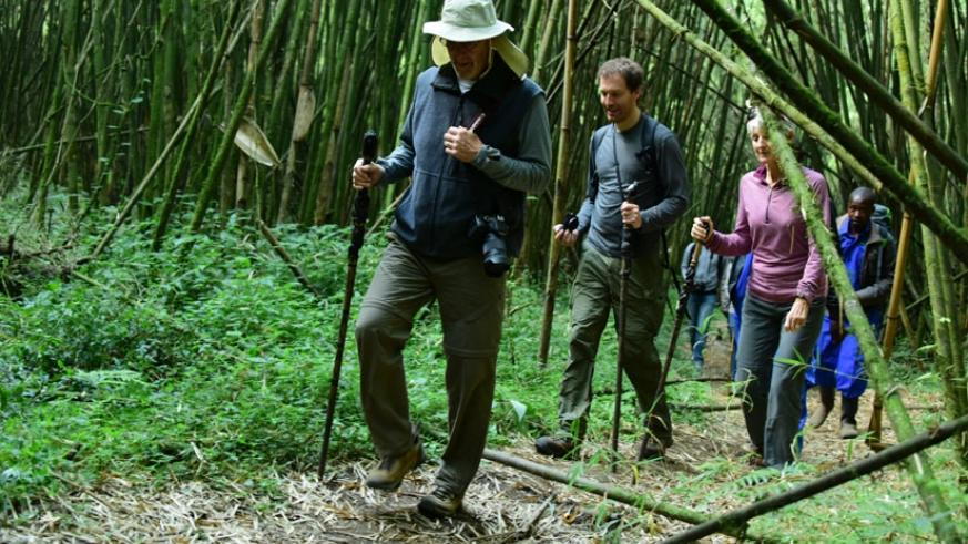 Tourists trek during the Kwita Izina event last month. RDB says it is working on developing Airbnb service to open accommodation options for tourists and other travellers into the ....
