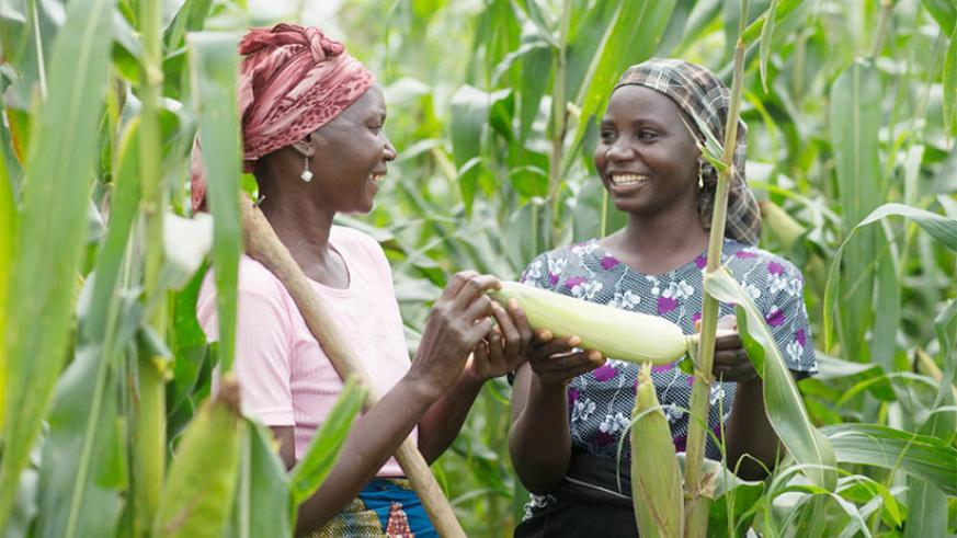 Most rural women depend on natural resources and agriculture for their livelihoods. / Internet photo