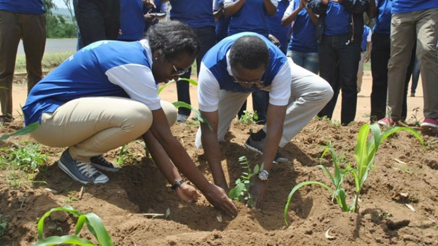 Dr Karusisi (L) and Minister Biruta plant a tree in Nyagatare District. / John Mbaraga.