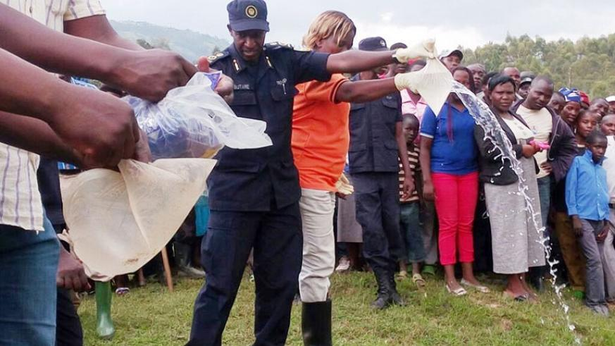 ACP Butare and Uwimana pour illicit gin during the public destruction exercise on Saturday in Gakenke District. / Courtesy.