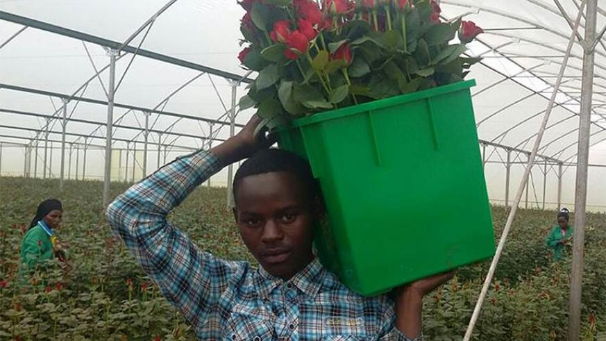 Promotion of flower growing is one of the interventions aimed at increasing export receipts.
