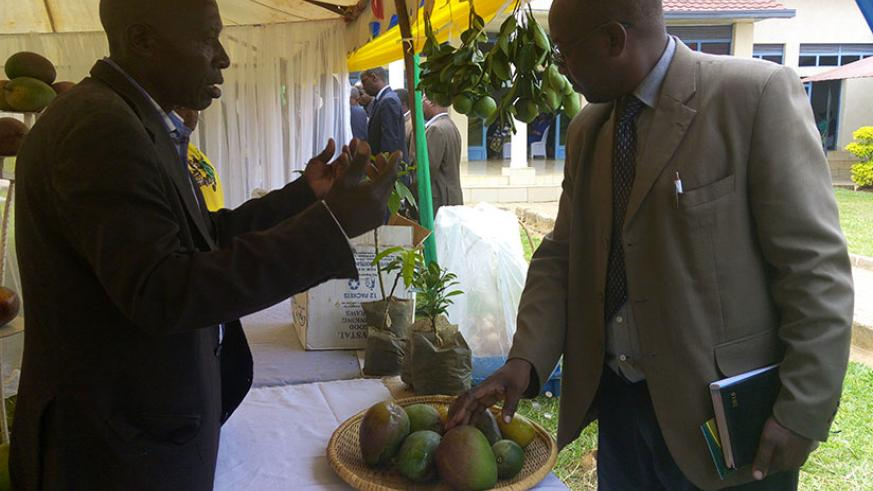 A farmer explaining about fruit growing during an exhibition in Bugesera District, December 29, 2016. / Emmanuel Ntirenganya