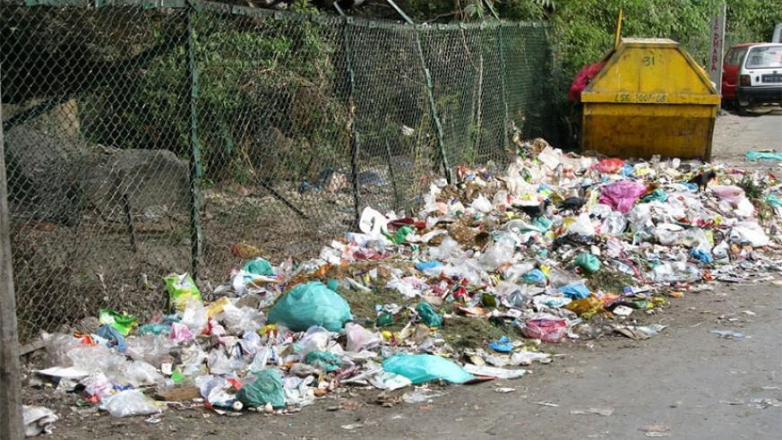Polyethylene bags are known to amass in landfills, litter streets, obstruct sewer systems and hurt marine life. Net photo.