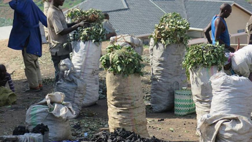 Charcoal on sale in Nyamagabe town. The south is the main source charcoal in the country. File.