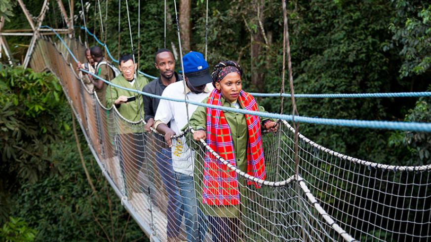 Local tourists on a 160m canopy in Nyungwe National Park during #TemberuRwanda campaign last year. / Faustin Niyigena